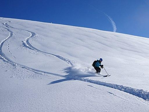ski injury prevention